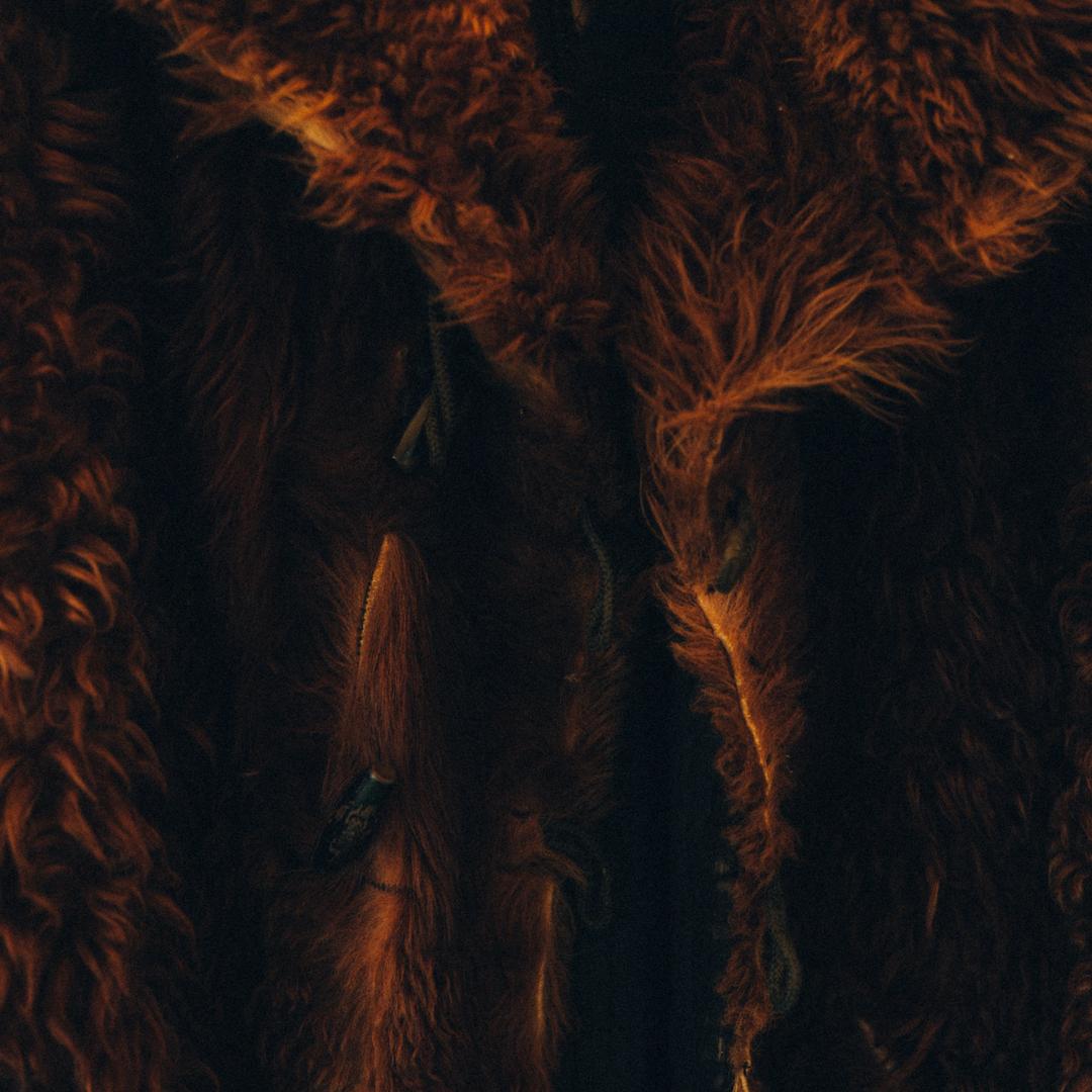 should men wear fur coats